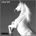 star26