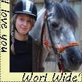 worl wide paarden