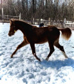 loveeyou