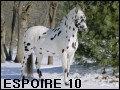 espoire10