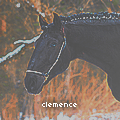 clemencecarnin