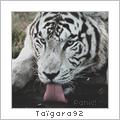 taïgara92