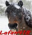 lafan418