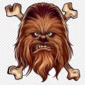 cassiopée59