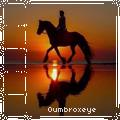 oumbroxeye