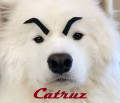 catruz