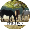 chat157