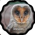 shiron86