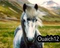 ouaich12