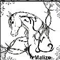 malize