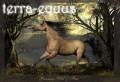 terra-equus