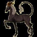 Cheval de selle Camargue Noir