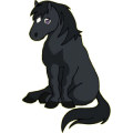 Cheval de selle Lusitanien Bai Brûlé
