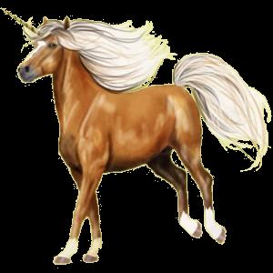 Poney licorne Shetland Rouan