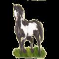 Cheval de selle Paint Horse Pie Tobiano Bai Cerise