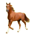 Cheval de selle Paint Horse Pie Tobiano Palomino