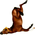 Cheval de selle Hanovrien Alezan Brûlé