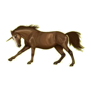 Poney licorne Pottok Noir