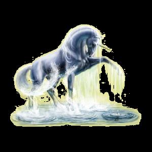 Licorne de selle Frison Noir