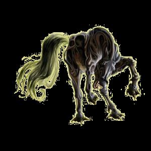 Cheval de selle Pur-Sang Anglais Noir