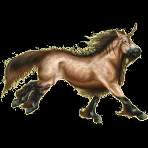 Poney licorne Shetland Alezan Brûlé Crins Lavés