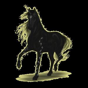 Licorne de selle Marwari Alezan Brûlé