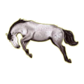 Cheval de selle Hanovrien Bai