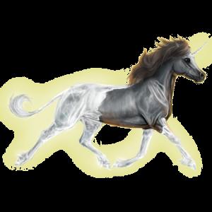 Poney licorne Welsh Gris Souris