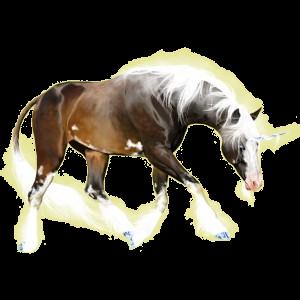 Licorne de selle Nokota Bai Brûlé