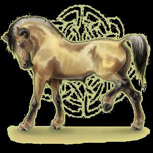 Licorne de selle Quarter Horse Rouan