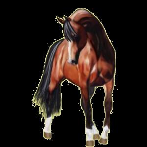 Pégase de selle Paint Horse Pie Alezan Overo