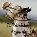 la révolution argentine
