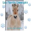 ❄ les fjords enneigés ❄
