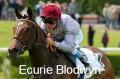 ecurie blodwyn