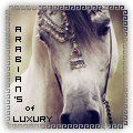 ❤ arabian's of luxury ❤