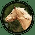 the welsh legends