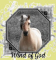 wind of god