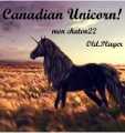 canadian unicorn!