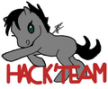 hack'team