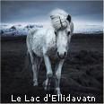 le lac d'ellíðavatn