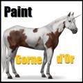 paint corne d'or