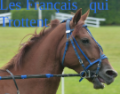 les français qui trottent