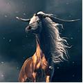 chevaux du tsar
