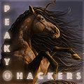 les peaky hackers
