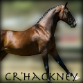 cr'hackney