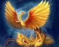 les plumes de feu