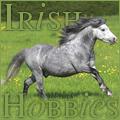 irish hobbies