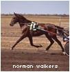 norman walkers