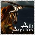 alis aquiiae ʊ