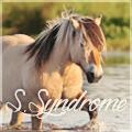 stockholm syndrom ✿